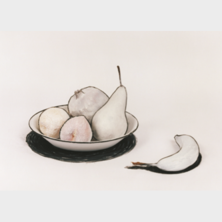 Pocztówka – Cynthia Greig, Nature Morte no. 3